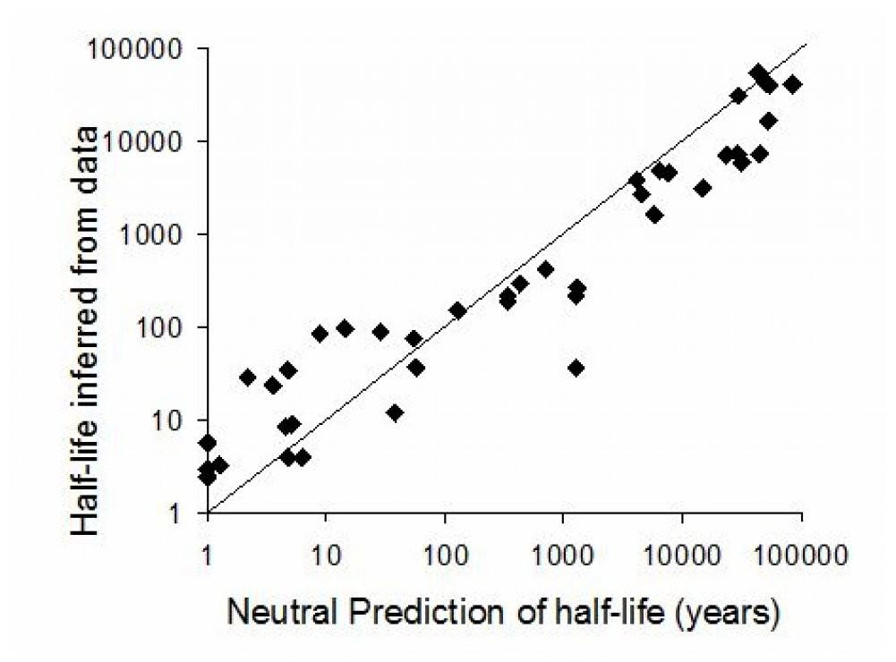 Extinction delays versus neutral prediction (image)
